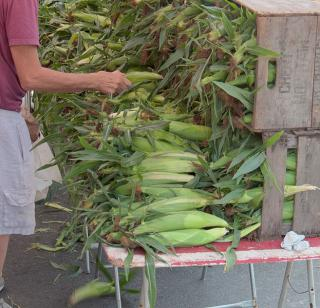 Farmers Market Corn: Image Source: Wikimedia Commons