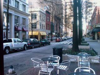 Pedestrian Friendly Street (Atlanta)